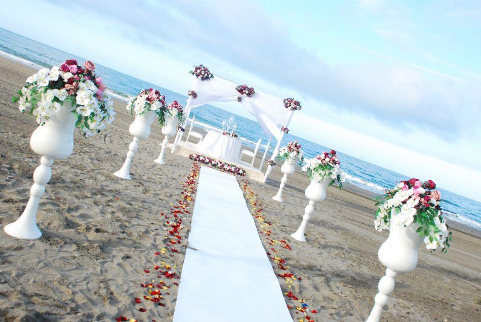 Omtel Plaj 2